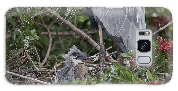 Great Blue Heron Nestling Galaxy Case