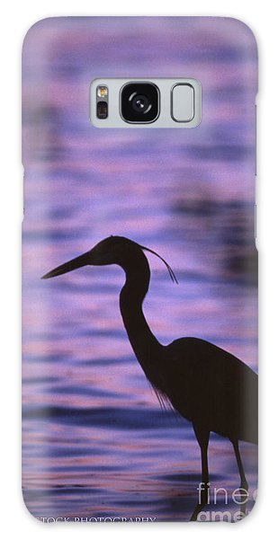 Great Blue Heron Photo Galaxy Case