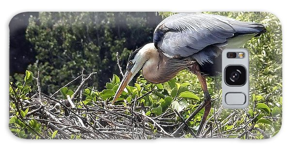 Great Blue Heron On Nest Galaxy Case