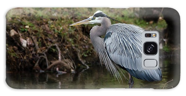 Great Blue Heron On The Watch Galaxy Case by George Randy Bass