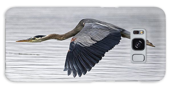 Great Blue Heron Over Still Waters Galaxy Case