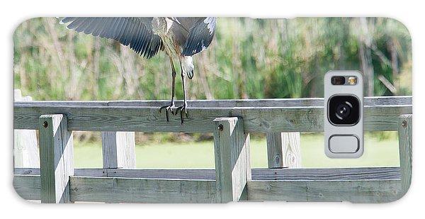 Great Blue Heron Preening Galaxy Case by Edward Peterson