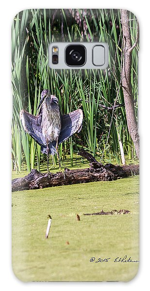 Great Blue Heron Sunning Galaxy Case by Edward Peterson