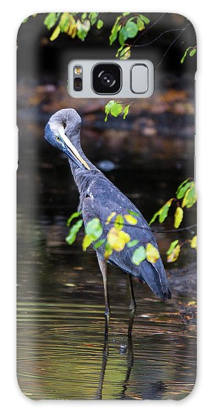 Great Blue Heron With An Itch Galaxy Case