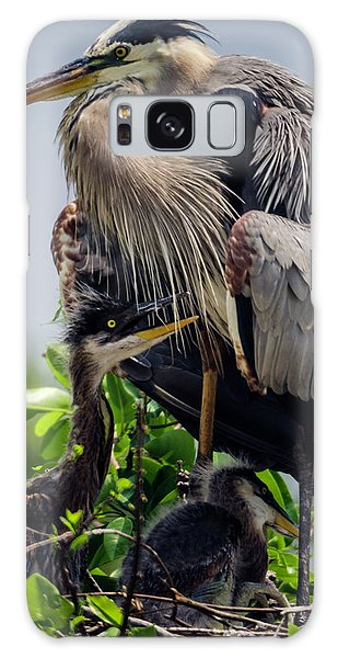 Great Blue Heron With Babies Galaxy Case