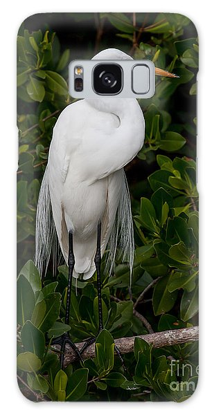 Galaxy Case featuring the photograph Great Egret by Chris Scroggins