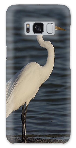 Great Egret In The Last Light Of The Day Galaxy Case