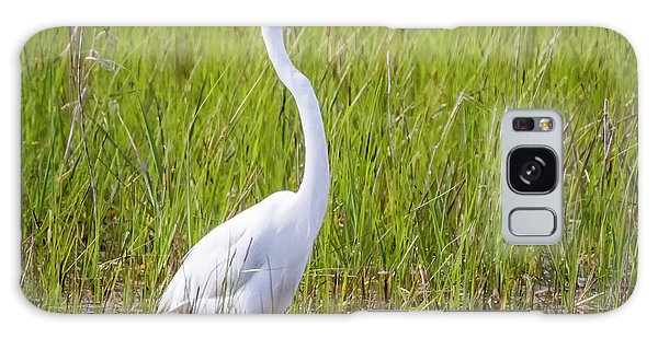 Galaxy Case featuring the photograph Great Egret In The Spring  by Ricky L Jones