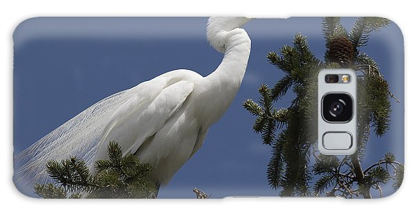 Great Egret Galaxy Case by Ursula Lawrence