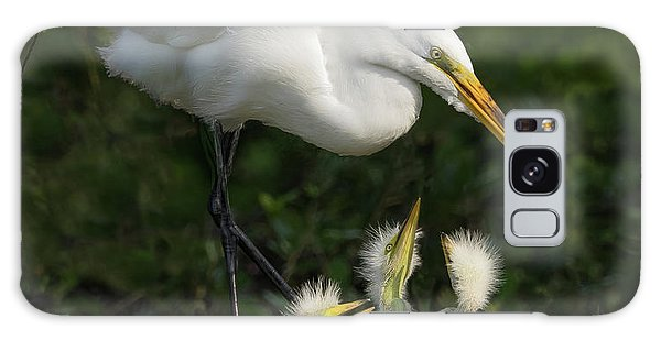 Great Egret With Chicks Galaxy Case