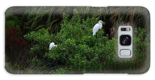 Great Egrets Galaxy Case