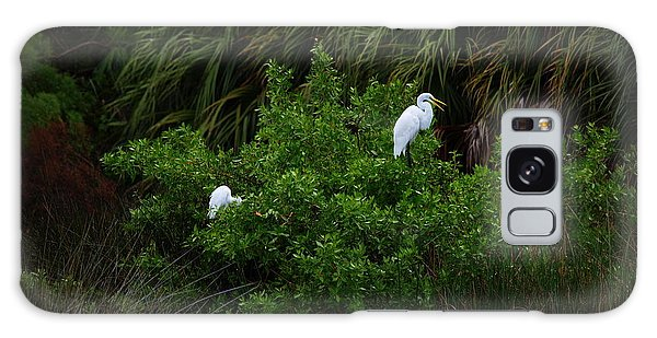 Great Egrets Galaxy Case