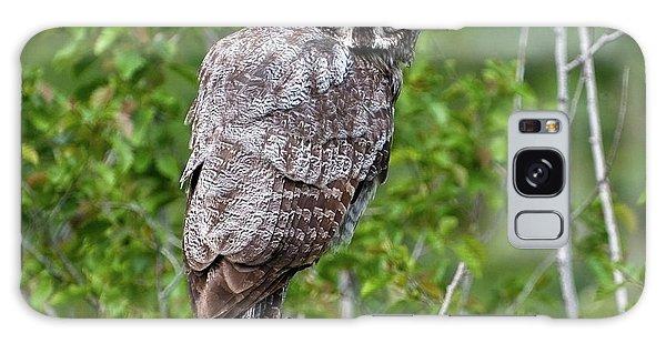 Great Gray Owl #2 Galaxy Case