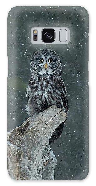 Great Gray Owl In Snowstorm Galaxy Case