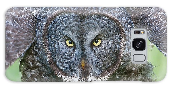 Great Gray Owl Flight Portrait Galaxy Case
