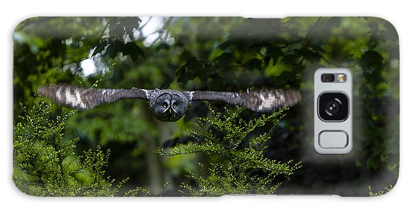 Great Grey Owl In Flight Galaxy Case