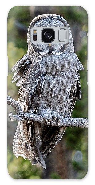 Great Grey Owl Yellowstone Galaxy Case
