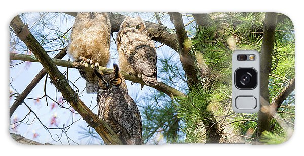 Great Horned Owl Family Galaxy Case