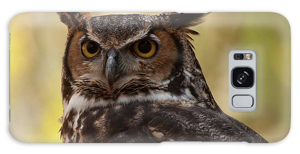 Great Horned Owl In A Tree 1 Galaxy Case by Chris Flees
