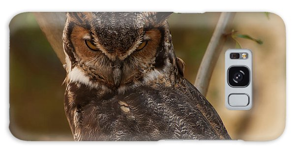 Great Horned Owl In A Tree 2 Galaxy Case by Chris Flees