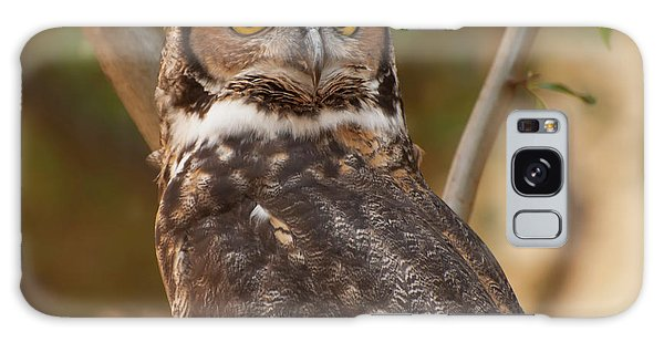 Great Horned Owl In A Tree 3 Galaxy Case by Chris Flees