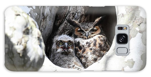 Great Horned Owl Nest Galaxy Case