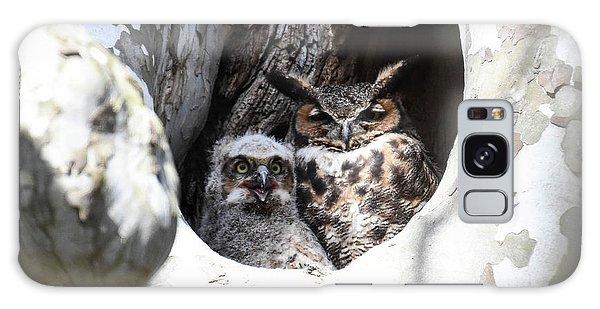 Great Horned Owl Nest Galaxy Case by Gary Wightman