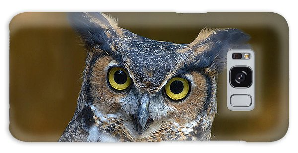 Great Horned Owl Portrait Galaxy Case by Kathy Baccari