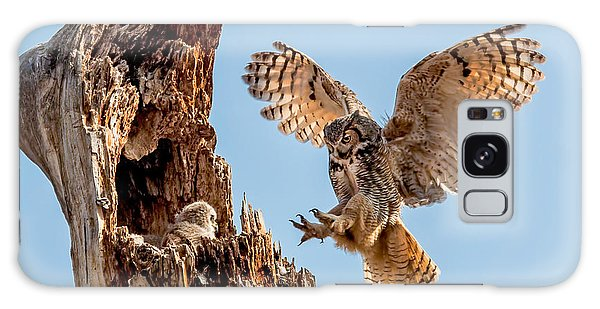 Great Horned Owl Returning To Her Nest Galaxy Case