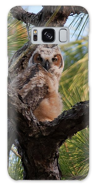 Great Horned Owlet Galaxy Case