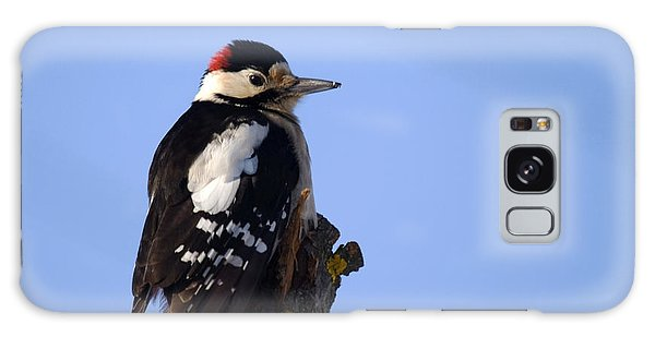 Great Spotted Woodpecker Against Blue Sky Galaxy Case