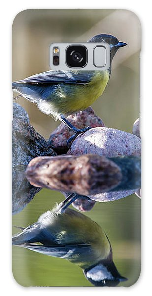 Great Tit On The Stone Galaxy Case