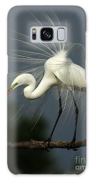 Majestic Great White Egret High Island Texas Galaxy Case