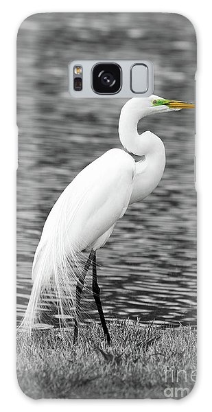 Egret Galaxy Case - Great White Egret by Paul Quinn