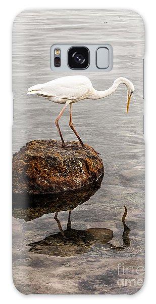 Great White Heron Galaxy Case by Elena Elisseeva