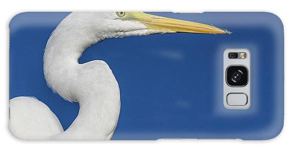 Great White Heron Galaxy Case