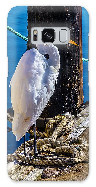 Great White Heron On Boat Dock Galaxy Case by Garry Gay