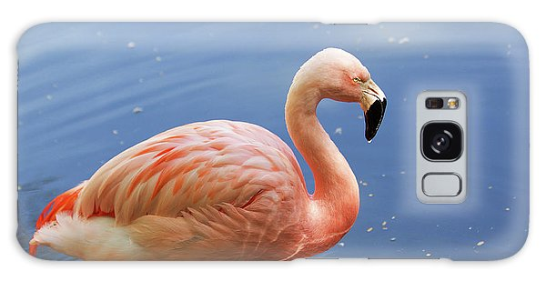 Greater Flamingo Galaxy Case