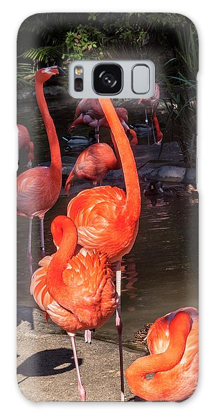 Greater Flamingo Galaxy Case