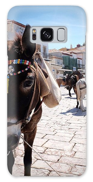 Greek Donkey Galaxy Case by Louise Fahy