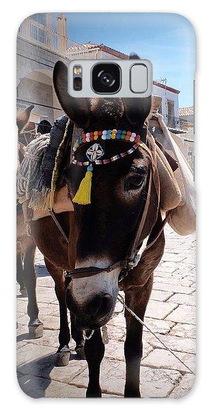 Greek Donkey Galaxy Case