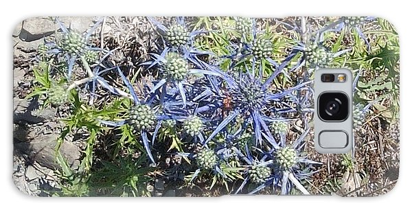 Greek Spiky Plant Galaxy Case
