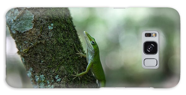 Green Anole Galaxy Case by Christopher L Thomley