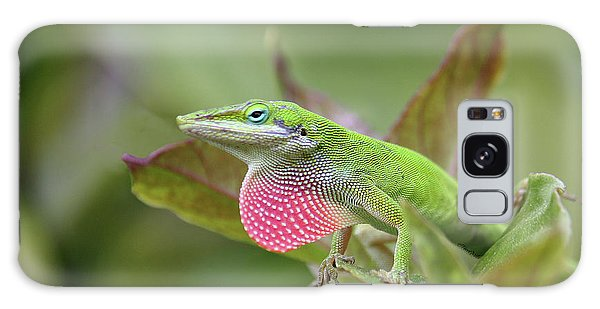 Green Anole Galaxy Case