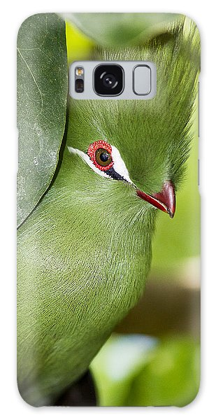 Green Turaco Bird Portrait Galaxy Case