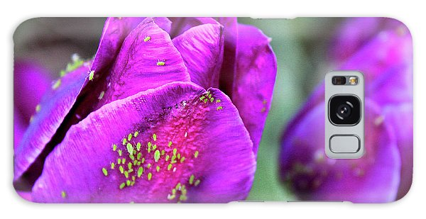 Aphids On Purple Tulips Galaxy Case