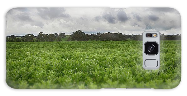 Green Fields 4 Galaxy Case by Douglas Barnard