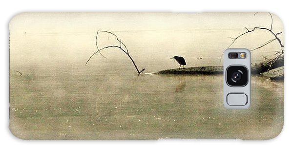 Green Heron In Dawn Mist Galaxy Case by Kathy Barney