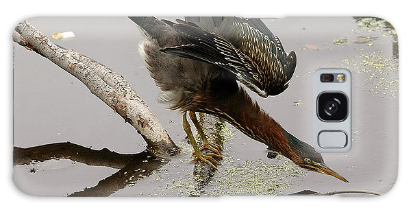 Green Heron Galaxy Case