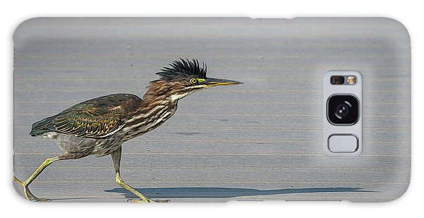 Galaxy Case featuring the photograph Green Heron On A Mission by Cindy Lark Hartman